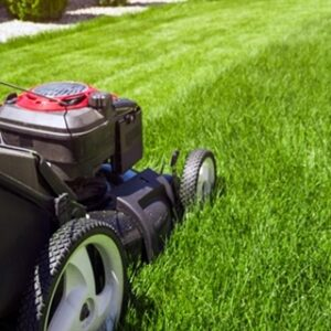 residential-lawn-care-services